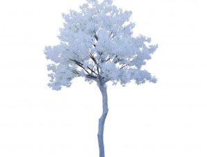 SpaceGreen Τεχνητό Δέντρο Χιονισμένη Αμυγδαλιά 340 εκ.