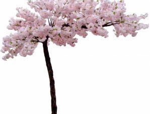 SpaceGreen Τεχνητό Δέντρο Ανθισμένη Κερασιά 300 εκ.